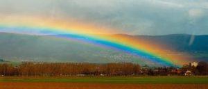 rainbowlarg